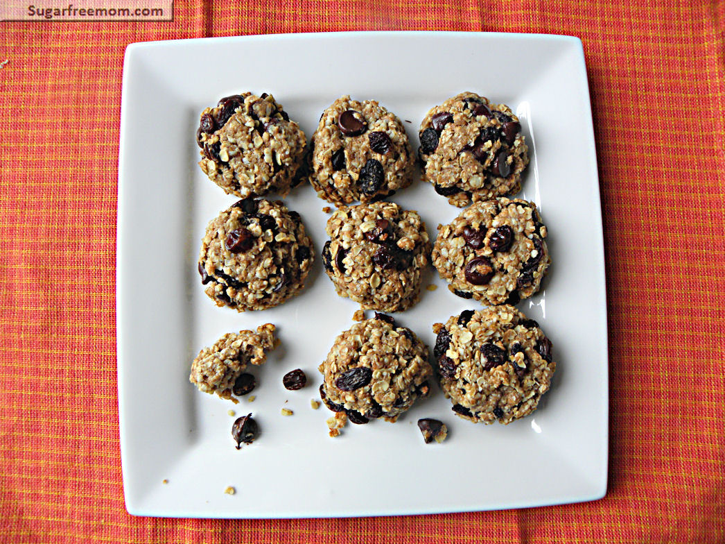 Sugar Free Oatmeal Raisin Cookies For Diabetics  diabetic oatmeal cookies with stevia