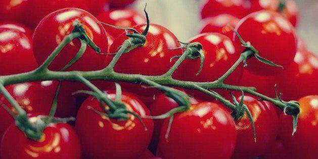 Tomatoes On Keto Diet  Keto Foods The Ultimate Ketogenic Diet Food List