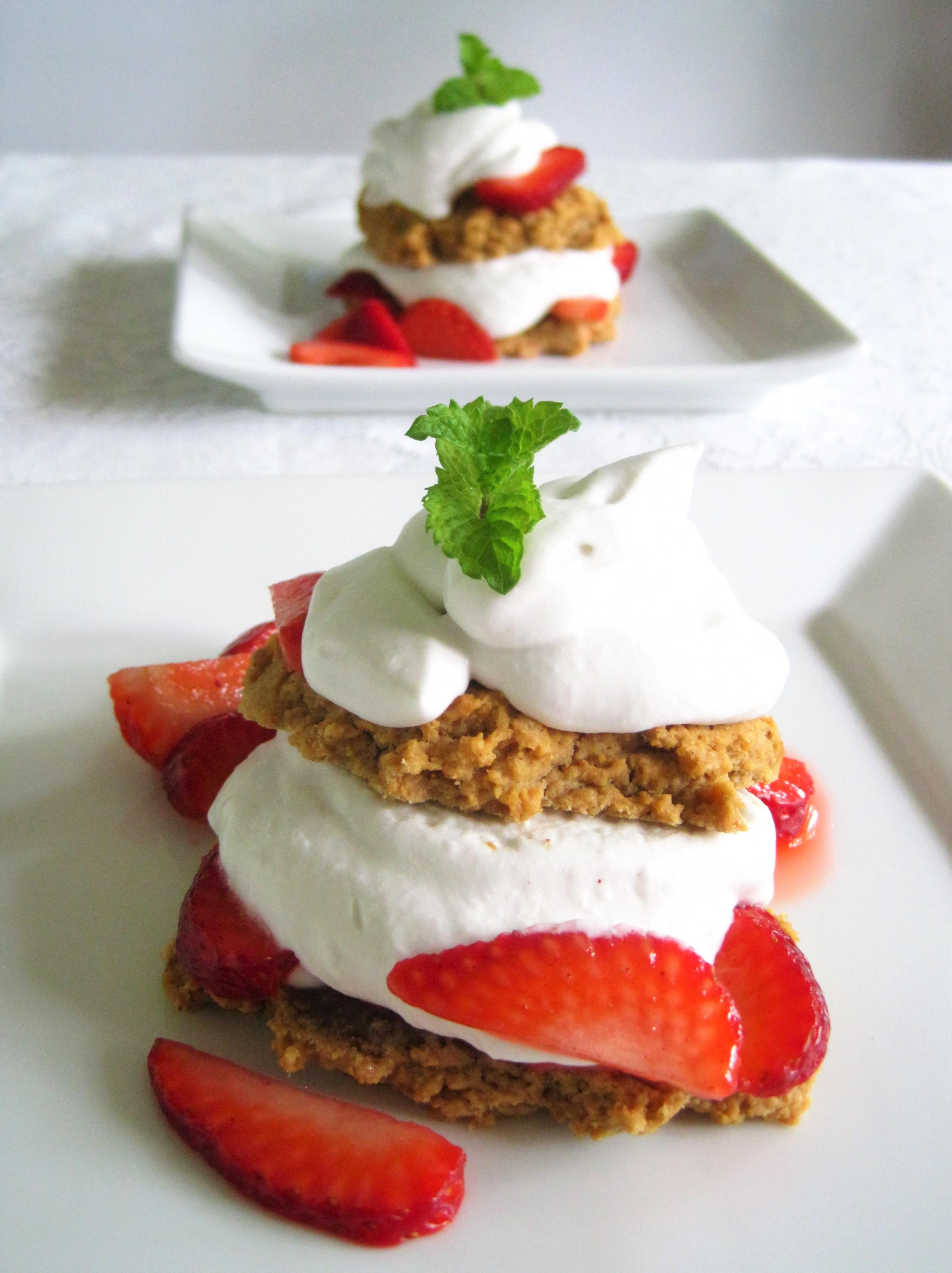 Vegan Aip Recipes  Strawberry Shortcake paleo AIP vegan Flash Fiction