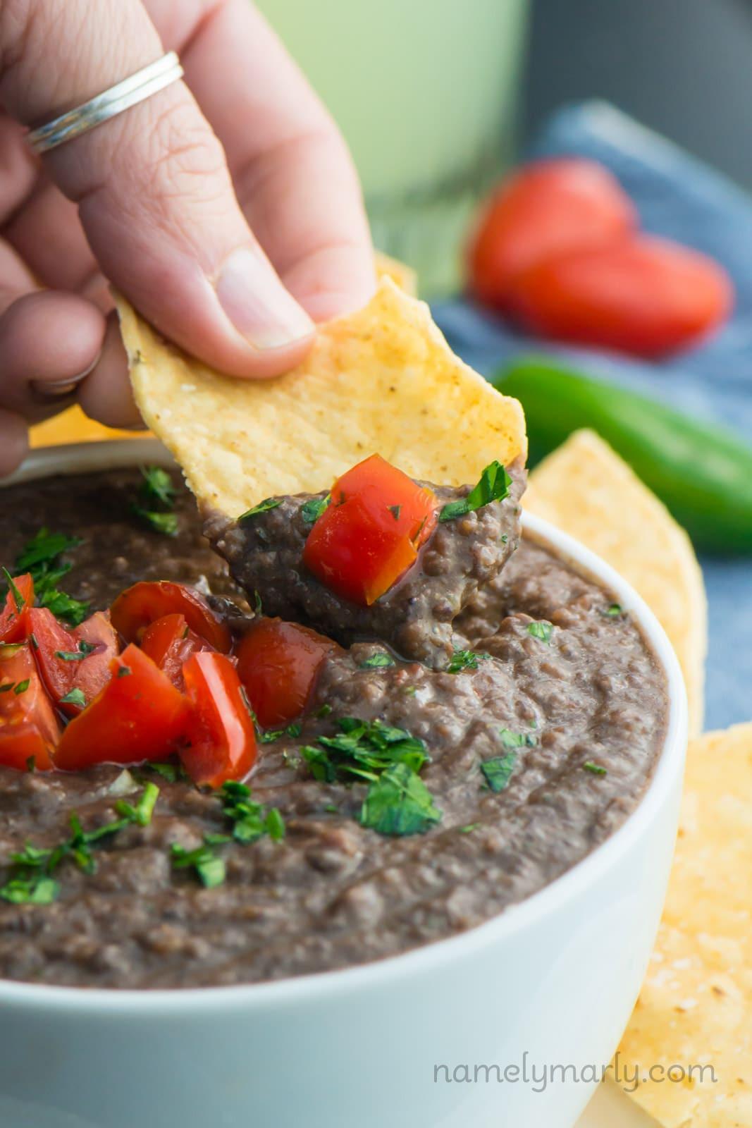 Vegan Bean Dip Recipes  Fresh and Easy Black Bean Dip Recipe Namely Marly