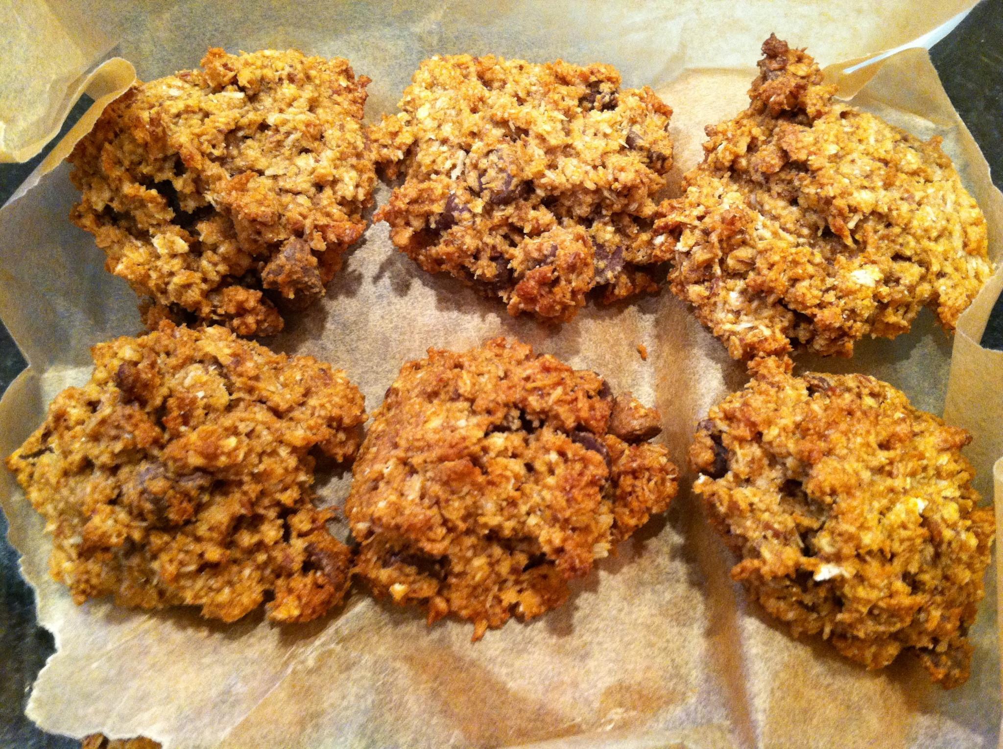 Vegan Coconut Cookies Recipes  Vegan Coconut Chocolate Chip Cookies