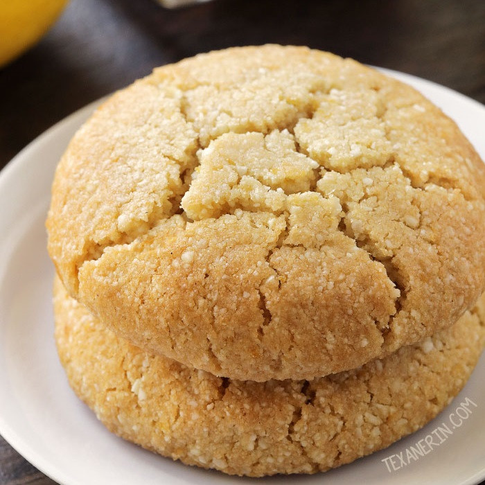 Vegan Cookie Recipes  Paleo Lemon Cookies vegan grain free gluten free dairy