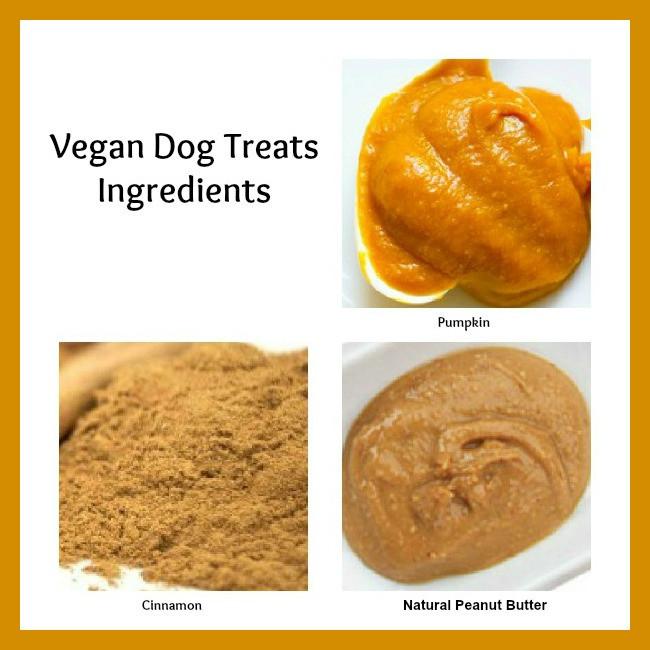 Vegan Dog Treat Recipes  Frosting Fran Vegan Dog Treats Recipe