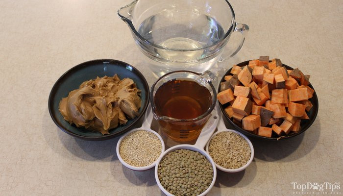 Vegan Dog Treat Recipes  Homemade Vegan Dog Food Recipe healthy and easy to make