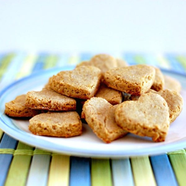 Vegan Dog Treat Recipes  7 Homemade Vegan Dog Treats Vegan Food Lover