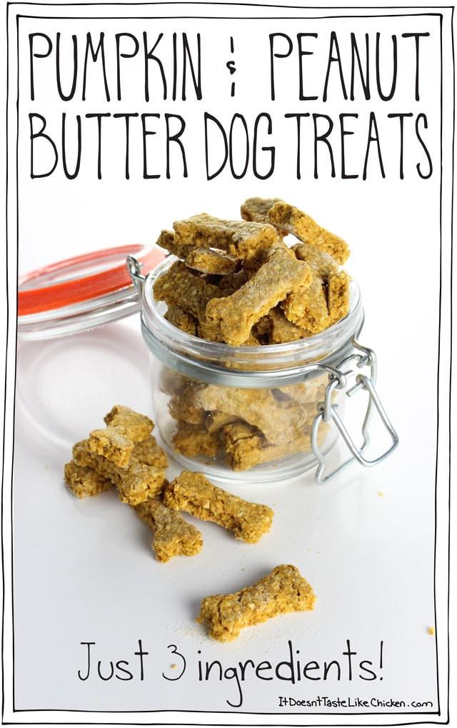 Vegan Dog Treat Recipes  Pumpkin & Peanut Butter Dog Treats just 3 ingre nts