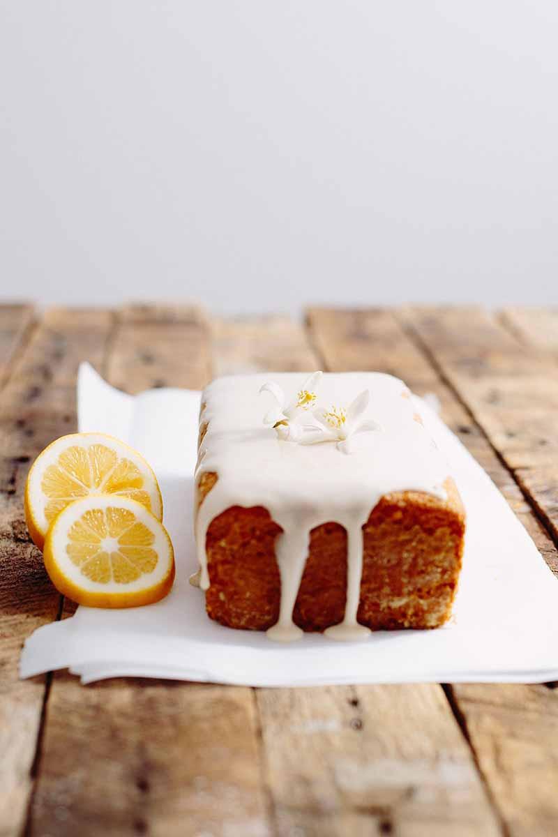 Vegan Lemon Pound Cake  Vegan Lemon Pound Cake