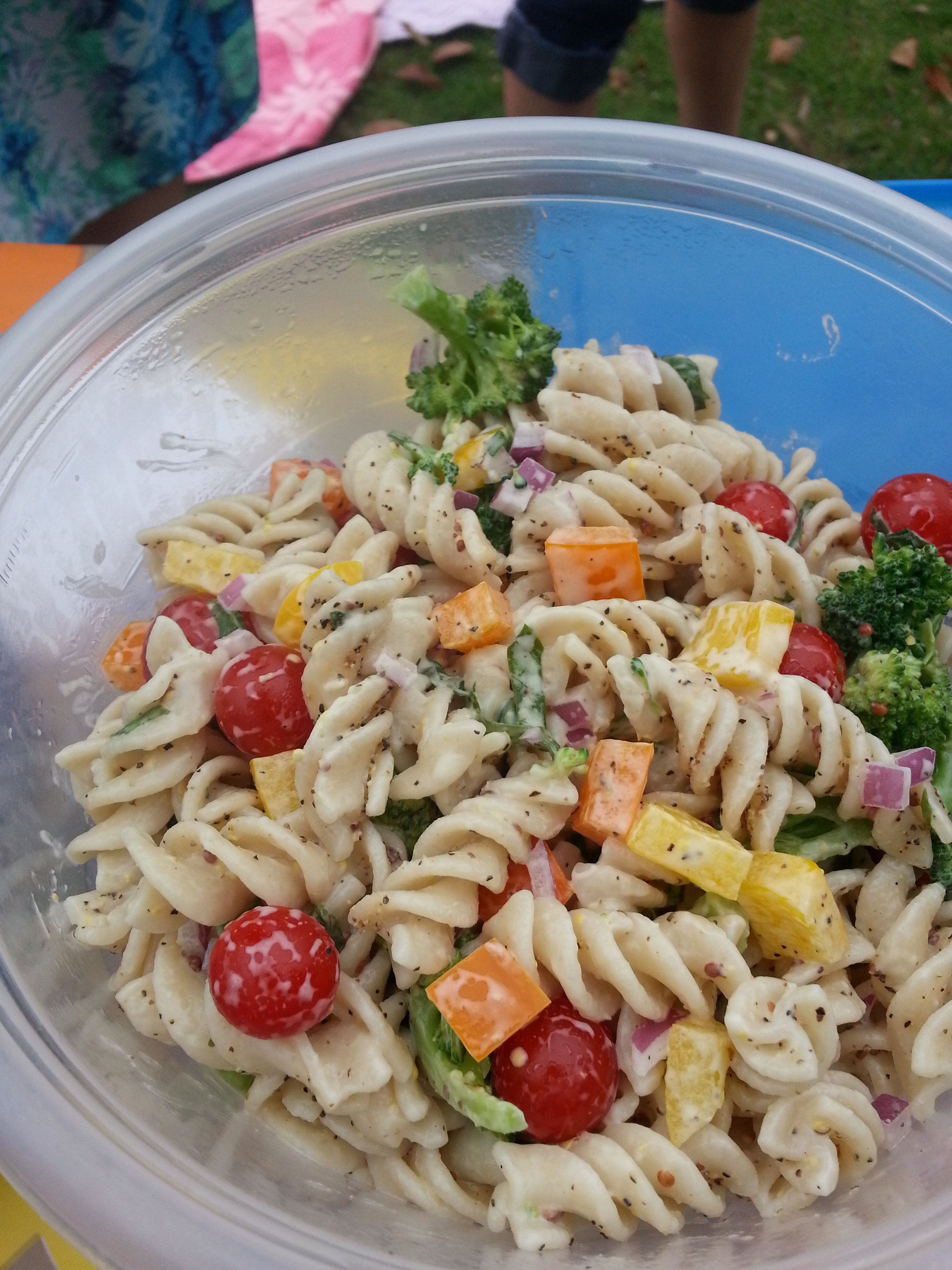 Vegan Pasta Salad Recipes  Vegan Recipes from a Picnic in the Park