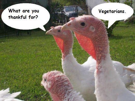 Vegan Thanksgiving Funny  Funny Thanksgiving Ve arian Way 2