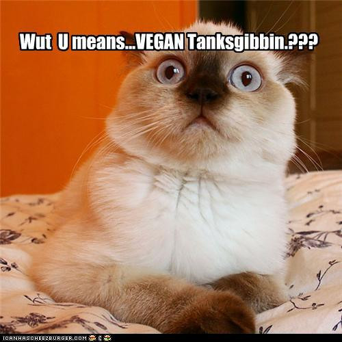 Vegan Thanksgiving Funny  Slavenka & Obi Vegan Thanksgiving