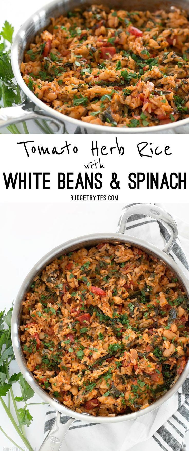 Vegan White Rice Recipes  Best 25 Ve arian rice dishes ideas on Pinterest