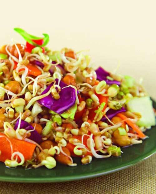 Vegetable Salad Recipes For Weight Loss  Sprouts and Ve able Salad Weight Loss After Pregnancy