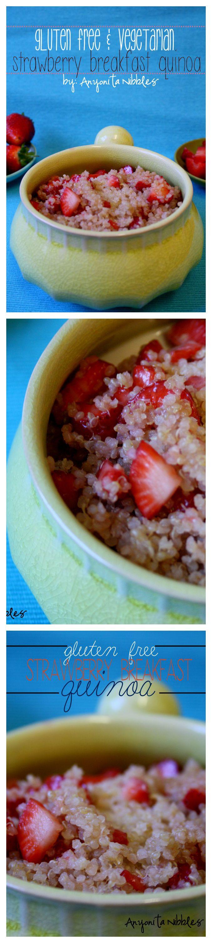 Vegetarian Dairy Free Recipes  Gluten Free Ve arian Breakfast Recipe Strawberry