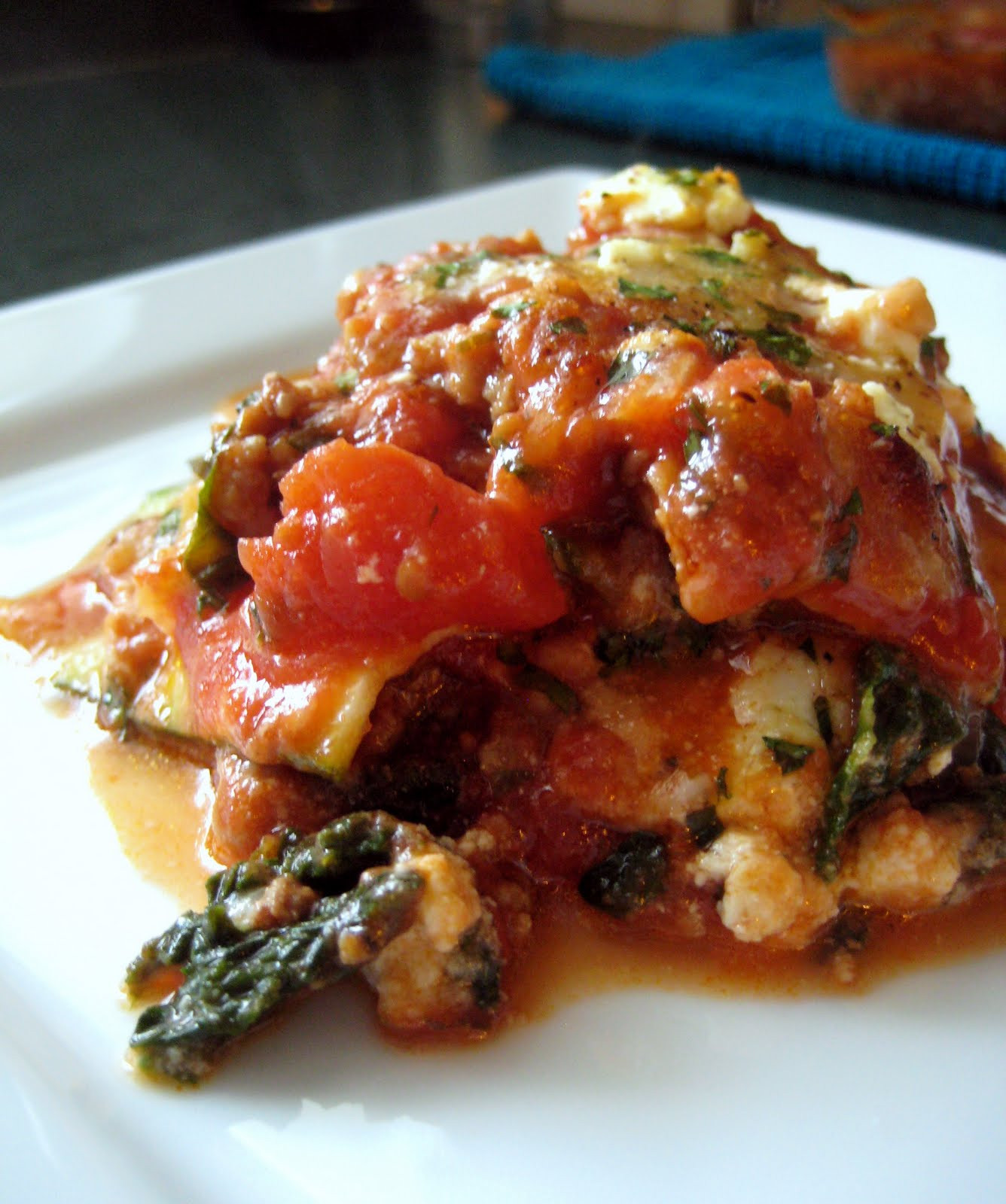 Vegetarian Eggplant Lasagna Without Noodles  Dandy Dishes Zucchini Lasagna