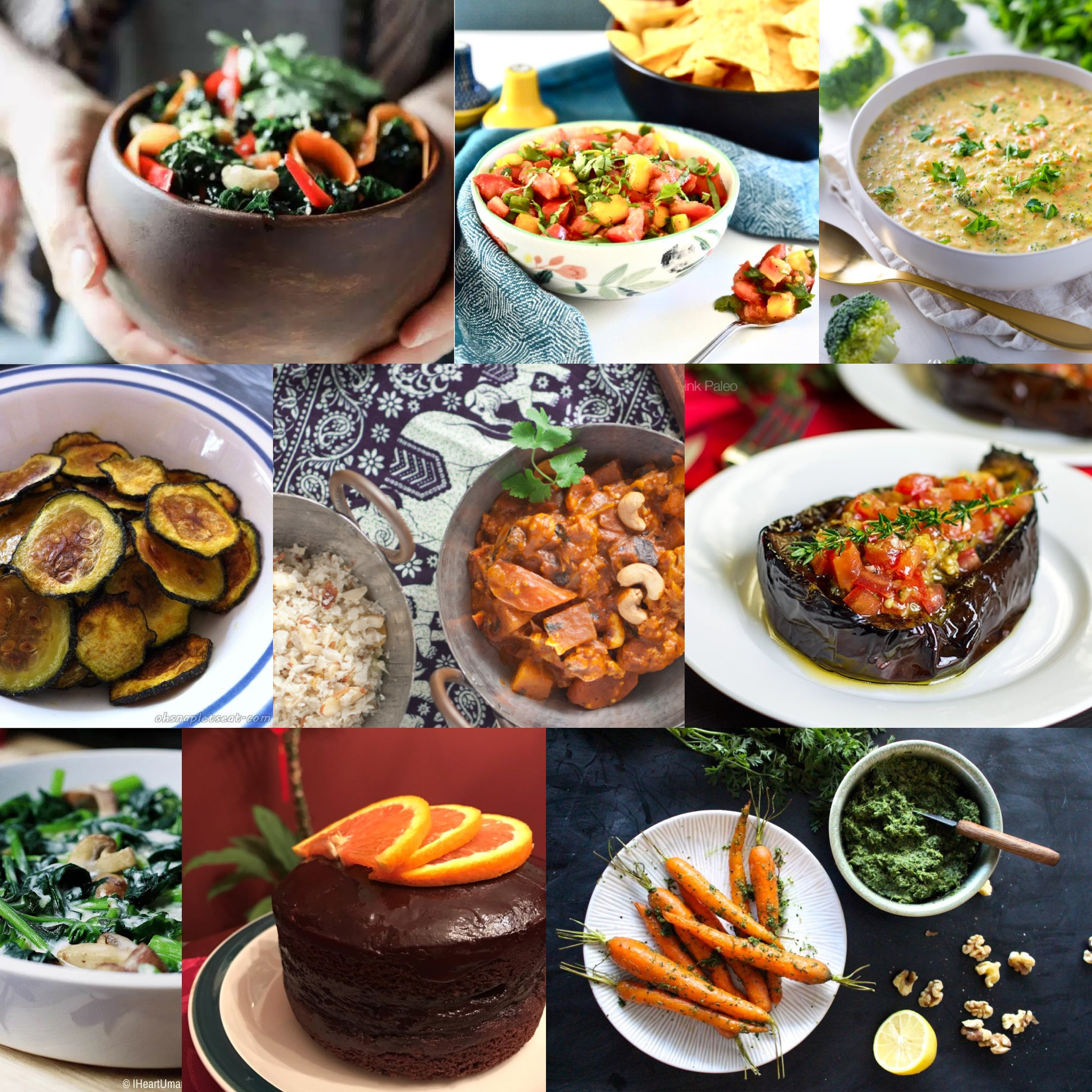 Vegetarian Paleo Recipes  The Ultimate Paleo Ve arian Recipes Roundup Oh Snap