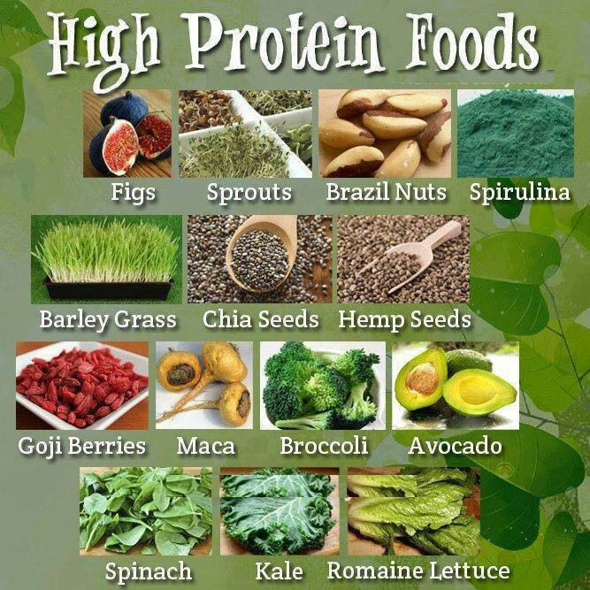 Vegetarian Protein Rich Foods  Diet for Healthy Nails 101