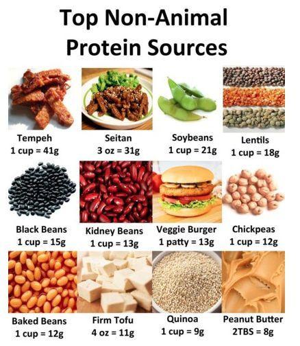 Vegetarian Protein Rich Foods  Vegan Protein Options
