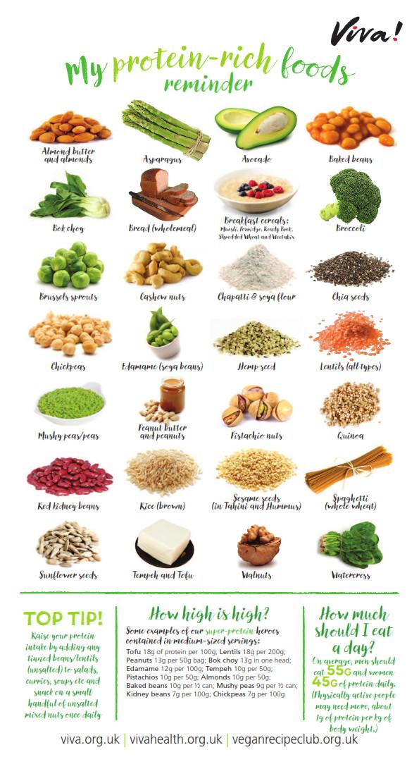 Vegetarian Protein Rich Foods  Protein rich foods wallchart
