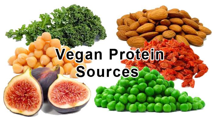 Vegetarian Protein Rich Foods  GYM Workout App