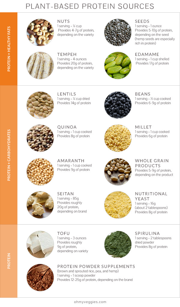 Vegetarian Sources Of Protein  Nutrition Q&A Protein Plant Based Diets