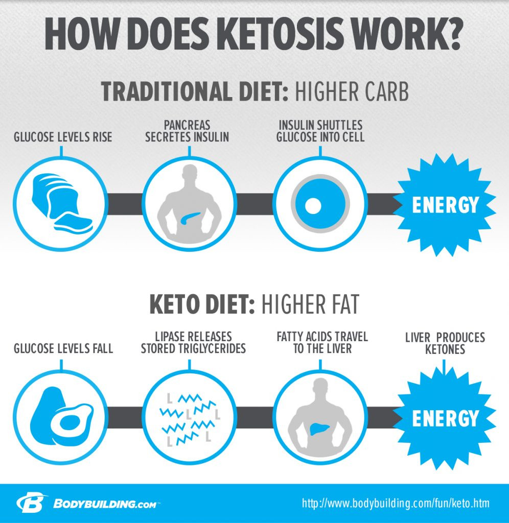 Why Am I Exhausted On The Keto Diet  Ketogenic Diet and Ketosis Lansdowne VA