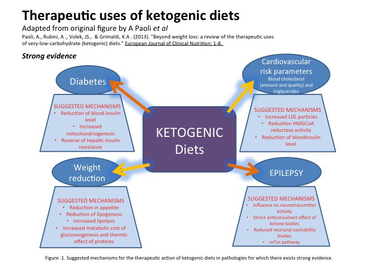 Why Does The Keto Diet Work  How ketogenic low carb high fat ts work – The Science