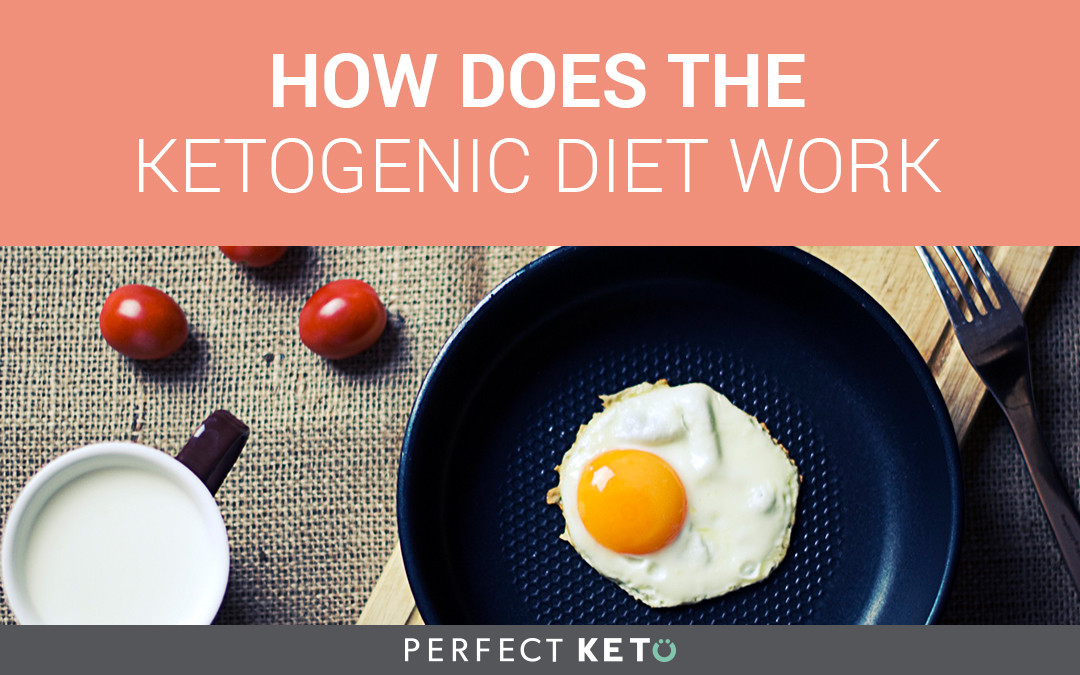 Why Does The Keto Diet Work  How Does the Ketogenic Diet Work Perfect Keto Exogenous