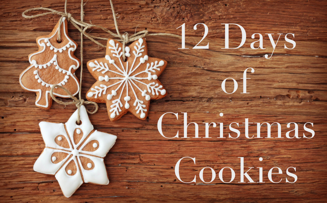 12 Days Of Christmas Cookies  12 Days of Christmas Cookies Series Meghan Birt
