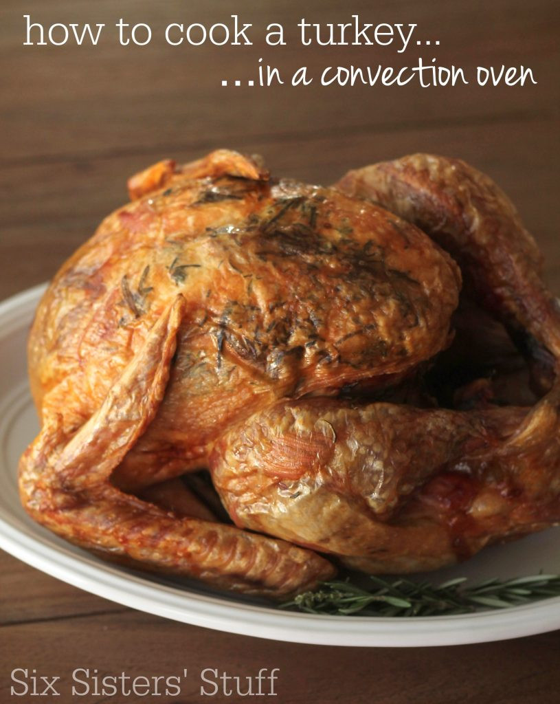 Bake Thanksgiving Turkey  How To Cook a Turkey in a Convection Oven