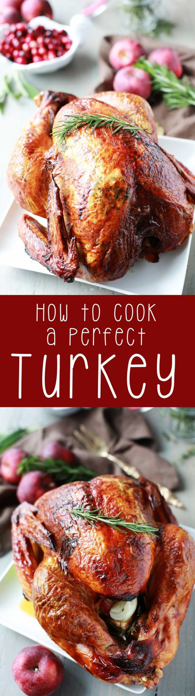 Bake Thanksgiving Turkey  How to Cook a Perfect Turkey Eazy Peazy Mealz