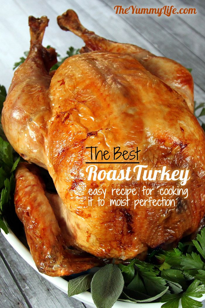 Bake Turkey Recipe For Thanksgiving  Step by Step Guide to The Best Roast Turkey