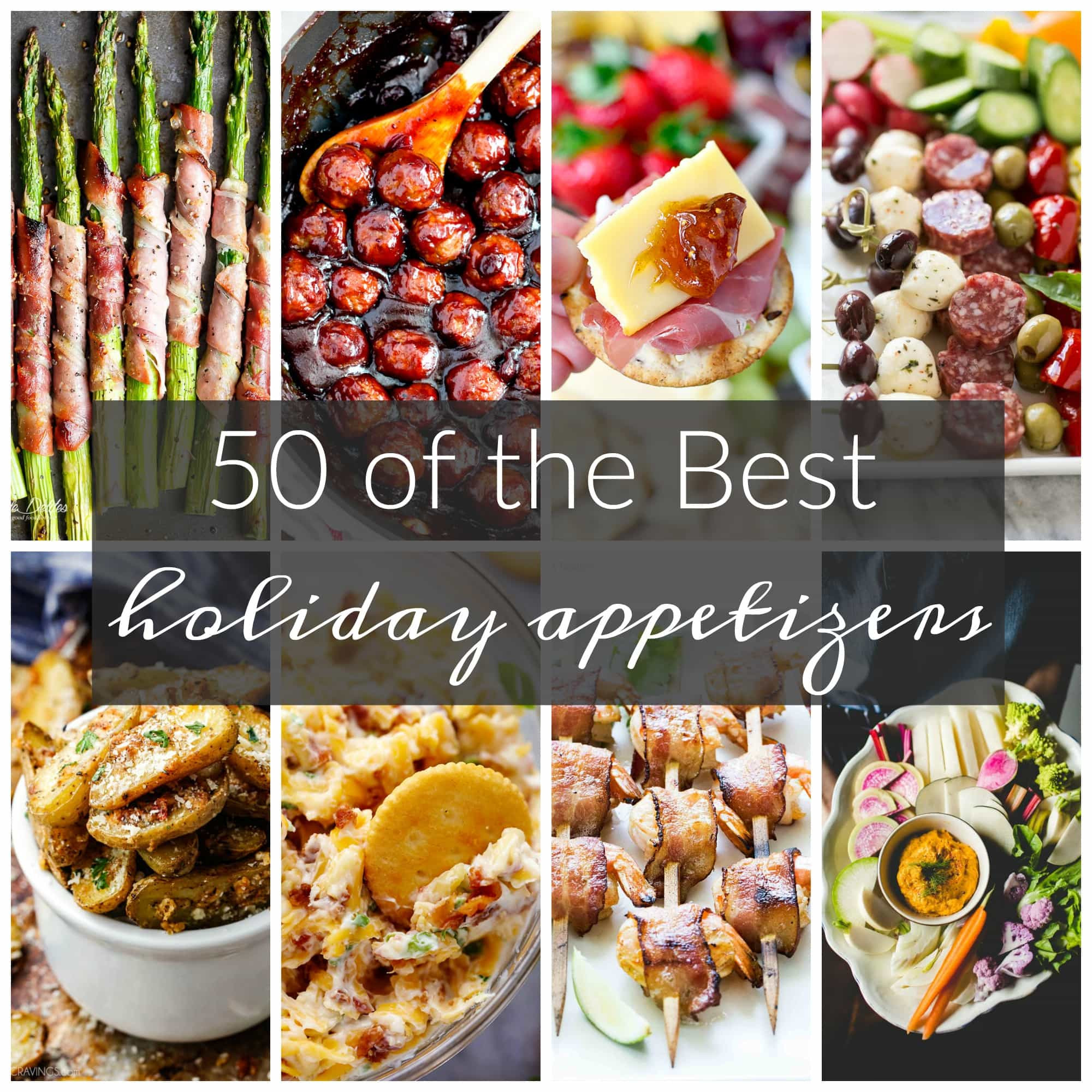 Best Christmas Appetizers  50 of the Best Appetizers for the Holidays A Dash of Sanity