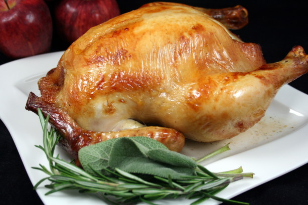 Best Turkey Brine Recipe Thanksgiving  Alton Browns Brined Turkey Recipe Food