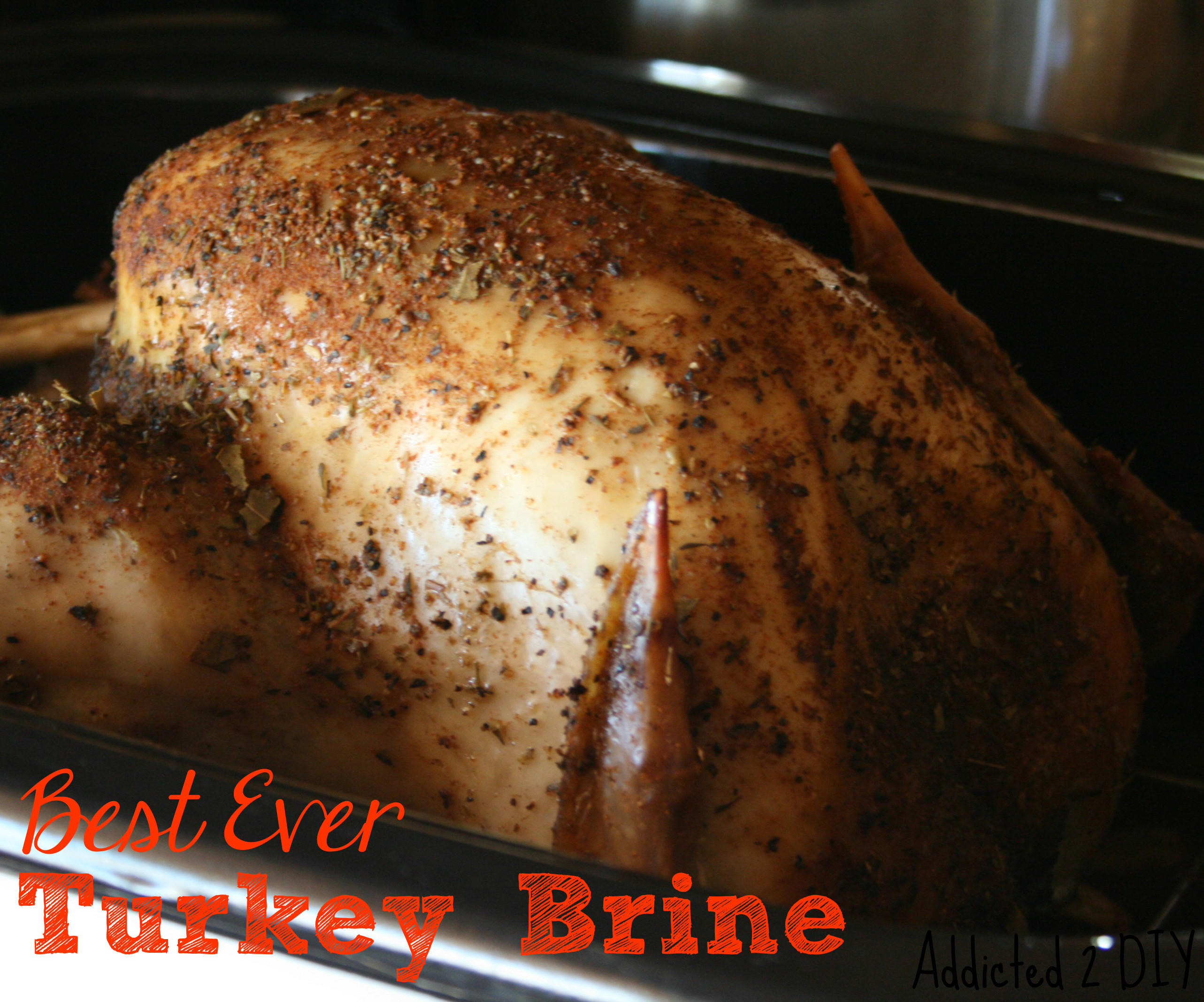Best Turkey Brine Recipe Thanksgiving  Best Ever Turkey Brine Addicted 2 DIY