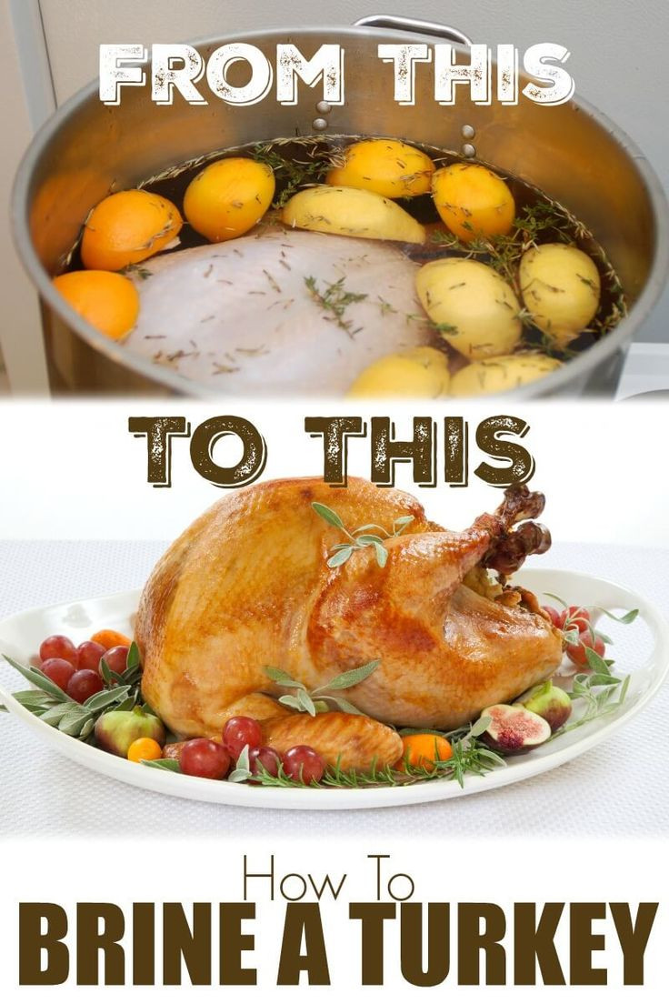 Best Turkey Brine Recipe Thanksgiving  How to Brine a Turkey What is a Brine Brine Recipe for