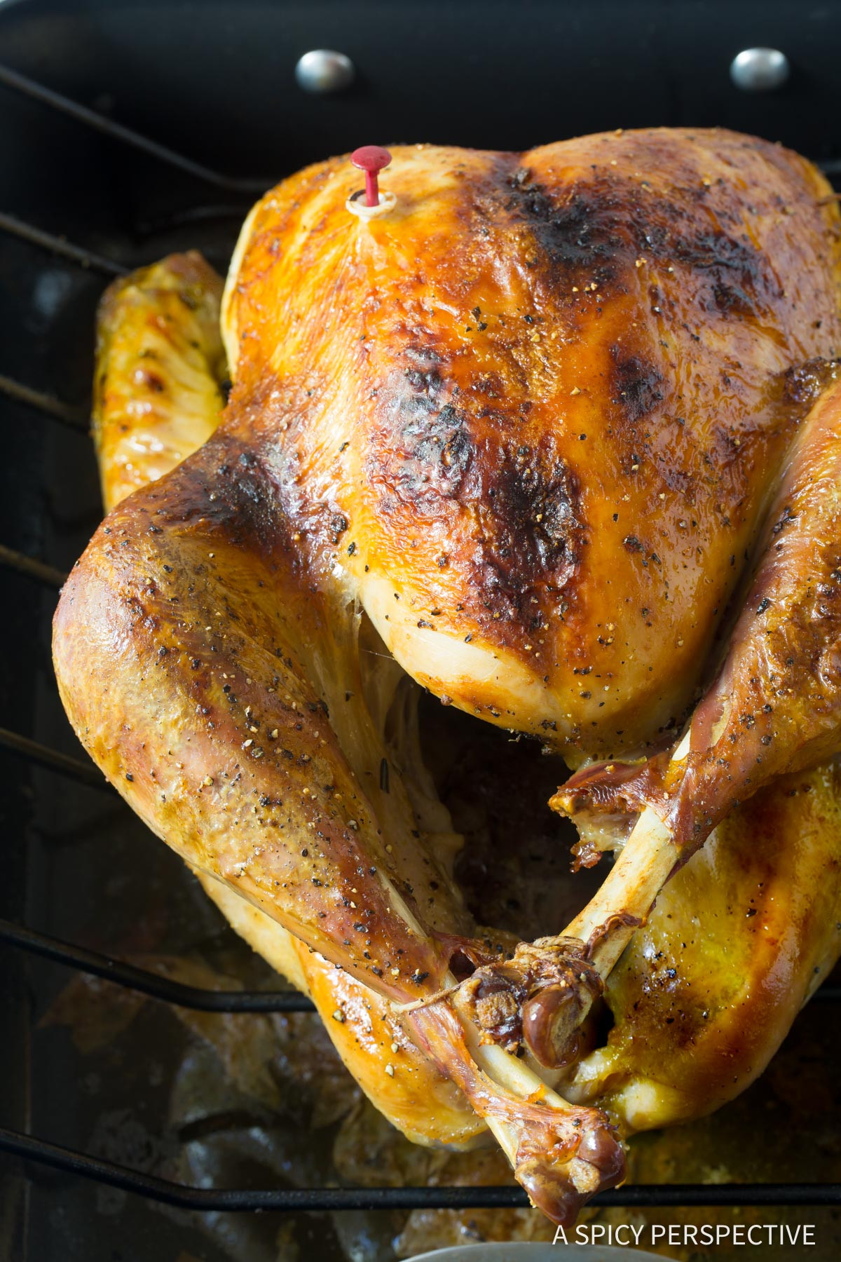 Best Turkey Brine Recipe Thanksgiving  Best Turkey Brine Recipe A Spicy Perspective
