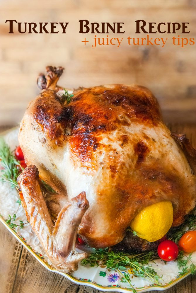 Best Turkey Brine Recipe Thanksgiving  Citrus and Herb Turkey Brine Recipe