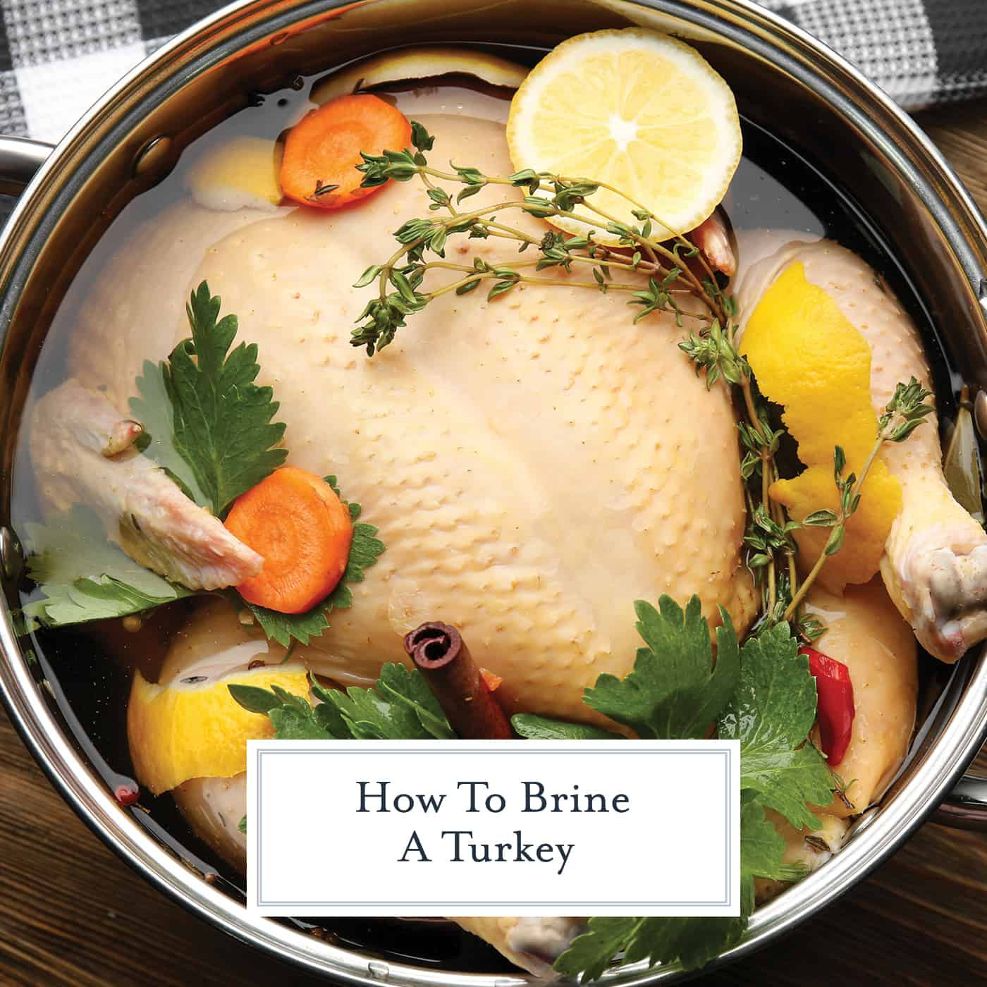 Best Turkey Brine Recipe Thanksgiving  How to Brine a Turkey VIDEO