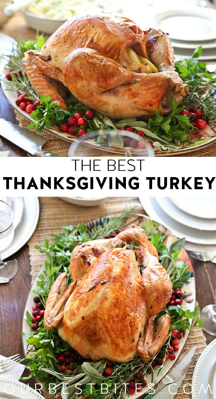 Best Turkey Recipe Thanksgiving  The Best Thanksgiving Turkey