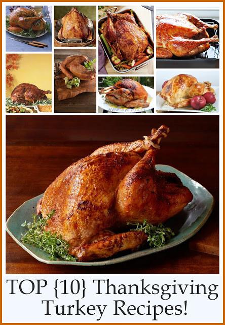 Best Turkey Recipe Thanksgiving  Top 10 Thanksgiving Turkey Recipes