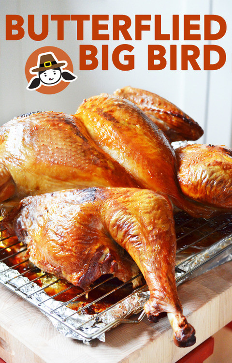 Biggest Thanksgiving Turkey  Butterflied Big Bird Spatchcocked Turkey Nom Nom Paleo