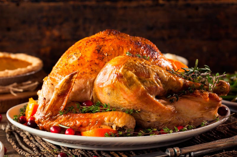 Biggest Thanksgiving Turkey  Thanksgiving Day Cómo Celebrar el Da de Acción de