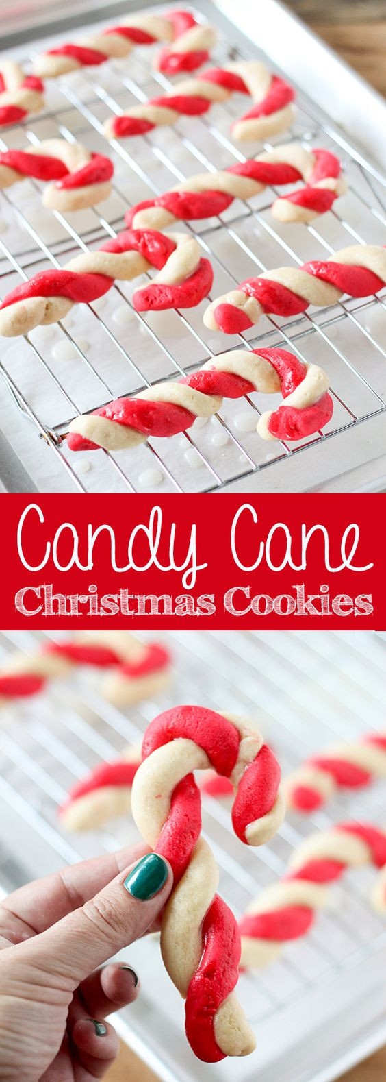 Candy Cane Christmas Cookies  Pinterest • The world's catalog of ideas