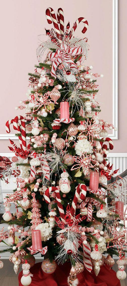 Candy Cane Christmas Tree  Christmas Tree Candy Cane tis the season