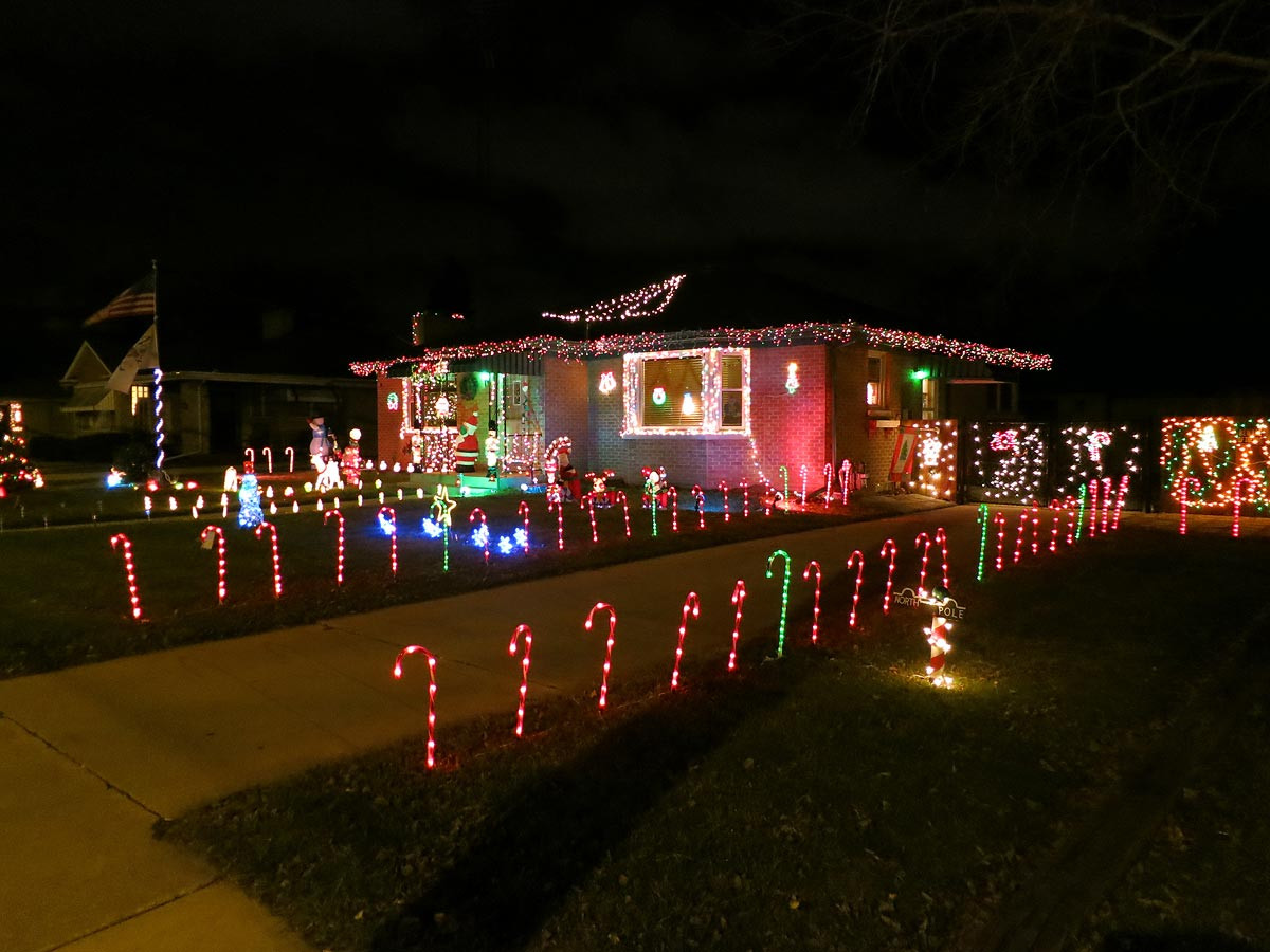 Candy Cane Led Christmas Lights  Christmas decorations Candy cane lights Racine Wisconsin