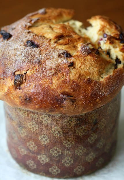 Christmas Bread Receipes  Panettone for the Holiday – Artisan Bread in Five Minutes