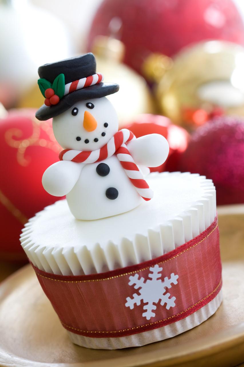 Christmas Cake And Cupcakes  Christmas Cupcake Ideas