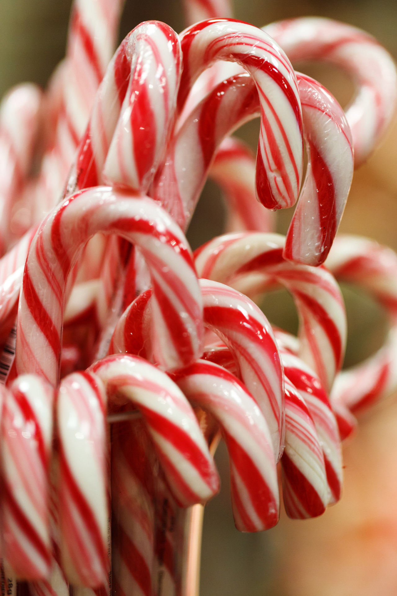 Christmas Candy Canes  50 Things You NEED Your Before Christmas Bucket List