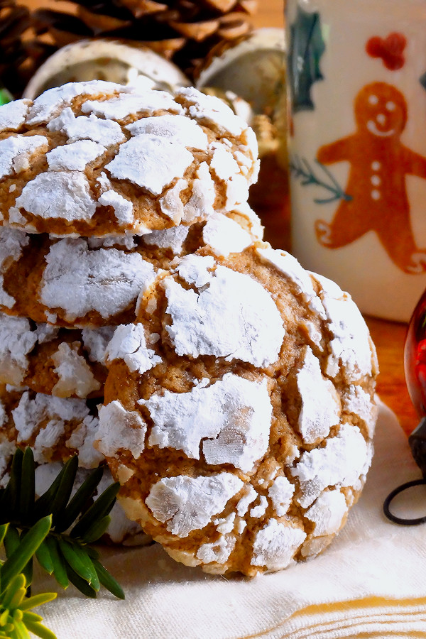 Christmas Cookies Recipes From Scratch  Gingerbread Gooey Butter Cookies from scratch  Wicked