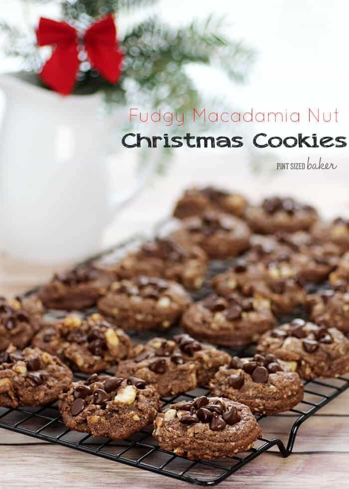 Christmas Cookies With Nuts  Fudgy Macadamia Nut Christmas Cookies Chocolate